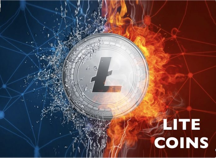 Lite coins Olymp Trade